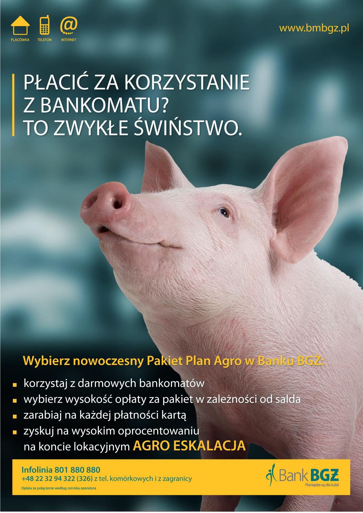 agro-swinia